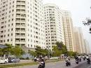 Tp. Hà Nội: @#Bán chung cư 34T diện tích 130m2 giá 28tr/ m2#$ CL1150984