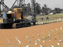 Tp. Hồ Chí Minh: Bấc thấm - vải địa kỹ thuật - thi công cắm bấc thấm - giấy dầu chống thấm CL1160083