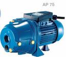 Tp. Hà Nội: Bơm hút giếng sâu Pentax AP 75 Công suất: 0. 59kw – 0983. 480. 878 CL1175905