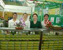 Tp. Hồ Chí Minh: Trà Tâm Lan-sản phẩm được ưa chuộng CL1179129P6