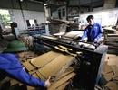 Tp. Hà Nội: nhận làm thùng carton 2-3-5-7 lớp giá cả cạnh tranh CL1178008