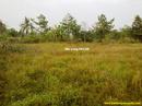 Tp. Hồ Chí Minh: Bán đất trang trại, sinh thái nghỉ dưỡng xã Tân Phú Trung, Củ Chi - DT : 4. 641m2 CL1178719