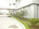 Tp. Hà Nội: Chăm sóc cắt tỉa cây cảnh, cây xanh thảm cỏ, chăm sóc sân vườn, cắt cỏ CL1179189