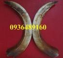Tp. Hồ Chí Minh: Bán nanh heo rừng chơi tết CL1183185
