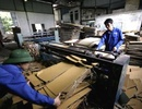 Tp. Hà Nội: công ty chuyên sản xuất, bán lẻ thùng carton giá cả cạnh tranh tại hà nội CL1184242P3