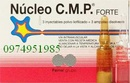 Tp. Hà Nội: núcleo c. m.p forte CL1184368