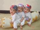 Tp. Hà Nội: Trung tâm cung ứng nhanh giúp việc gia đình! CL1218512