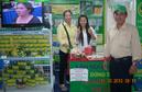 Tp. Hồ Chí Minh: Trà Tâm Lan-sản phẩm tốt phòng và chữa bệnh, giá ổn định CL1196590P11