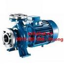 Tp. Hà Nội: bán máy bơm nước pentax CM 40- 160A, CM 40- 200A CL1204224P2