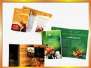 Tp. Hà Nội: In tờ rơi giá rẻ và chất lượng CL1210004P8