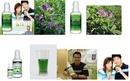 Tp. Hồ Chí Minh: Nước diệp lục: Chống chất độc, Chống lại chất gây ung thư CL1214595P10
