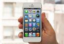 Tp. Đà Nẵng: iphone 5 bản mới nhất CL1208277