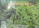 Tp. Hồ Chí Minh: Miếng dán KINOTAKARA-Chữa đau xương khớp rất tốt, hàng Nhật , giá rẻ CL1215999