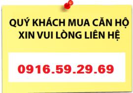 Chính chủ bán gấp căn 2PN Giai Việt Chánh Hưng, block A1, view công viên. Liên h