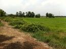 Tp. Hồ Chí Minh: Bán đất Hóc Môn giá rẻ MT Kênh lớn sát đường nhựa 1253m2 giá chỉ 1. 2 tỷ. Hóc môn. CL1217749