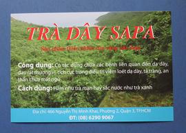 Trà dây SAPA -chữa dạ dày, tá tràng hiệu quả
