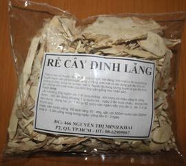 Bán rễ cây DINH LĂNG-bồi bổ cơ thể, chữa nhức mỏi