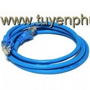 Tp. Hà Nội: Patch cord lan Cat 6 , Patch cord Cat 6 AMP CL1653433