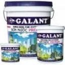 Tp. Hồ Chí Minh: Với sơn GALANT bạn không phải lo về thời tiết CL1187613P10