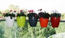 Tp. Hà Nội: Dịch vụ cung cấp cây giống, vật tư làm vườn CL1228487