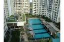 Tp. Hồ Chí Minh: Căn hộ tầng 17 có sân vườn dt 98m2 giá rẻ CL1110610