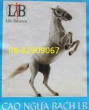 Tp. Hồ Chí Minh: Cao Ngựa Bạch -tốt cho sức khỏe, giá khuyến mãi CL1233723