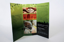 Tp. Hà Nội: in brochure giá rẻ_chuyên nghiệp_mẫu mã đẹp CL1251015