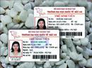 Tp. Hà Nội: Làm thẻ học sinh - ĐT 0904242374 CL1254348P11
