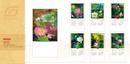 Tp. Hà Nội: mẫu lịch 2014 mới nhất CL1254348