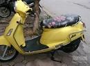 Tp. Hà Nội: Cần bán xe Suzuki bella 125cc mầu vàng cực đẹp còn mới chất miễn chê giá 16,7tr CL1271384P9