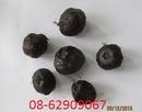 Tp. Hồ Chí Minh: Tỏi Đen- nhiều công dụng vượt trội tốt-phòng ngừa bệnh CL1283884