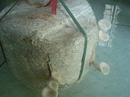 Tp. Hà Nội: bán bịch nấm trồng tại nhà CL1215704