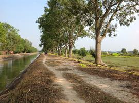 Bán đất mặt tiền Kênh Đông, xã Trung Lập Thượng, Củ Chi - DT : 6. 518m2