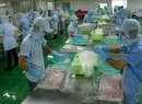 Tp. Hà Nội: Tuyển lao động đi Nhật ngành Chế biến thực phẩm, nuôi trồng thủy sản CL1153936