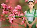 Tp. Hà Nội: Cung cấp giúp việc làm 10 ngày Tết hoặc làm lâu dài các mẹ nhé! CL1334915