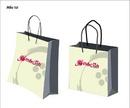Tp. Hà Nội: Chuyên in túi giấy, hộp giấy, bao bì sản phẩm CL1300623