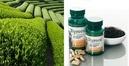 Tp. Hồ Chí Minh: Trà Tegreen 97 chống oxi hóa hỗ trợ giảm mỡ máu, giảm cholesterol CL1272043P11