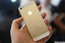 Tp. Hồ Chí Minh: iphone 5s 16gb gold xách tay nguyen hop giá rẻ CL1303562