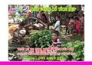 Tp. Hà Nội: vườn cổ tích trường mầm non, thiết kế vườn cổ tích mầm non, tranh tường mầm non CL1306620