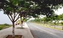 Bình Dương: Bán đất Thuận An , Bình Dương _ The Sun City Bắc Sài Gòn CL1218170