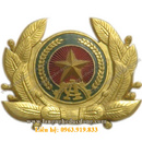 Tp. Hà Nội: Huy hiệu, huy chương, huân chương, bảng tên, phù hiệu, Kỉ niệm chương, biểu trưn CL1292850