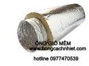 Tp. Hồ Chí Minh: bảo ôn tieu am duong ong dan gió CL1696660