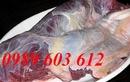 Tp. Hà Nội: Đại lý phân phối thịt bò tươi sống, thịt bò Việt tại Hà Nội RSCL1269793