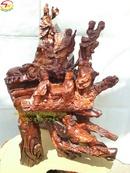 Tp. Hồ Chí Minh: Bát tiên (gốc gỗ cẩm, cao 89cm - BT103) CL1322421
