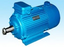 Tp. Hà Nội: Động cơ dây cuốn chuyển dụng CL1323601