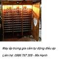 Tp. Hà Nội: Cơ sở bán các loại máy ấp trứng gia cầm, thủy cầm tự đông giá rẻ CL1327957