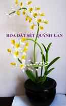 Tp. Hồ Chí Minh: Hoa đất sét - Hoàng Lan CL1087631