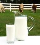 Tp. Hà Nội: Cung cấp sữa bò tươi nguyên cho các trường học mẫu giáo tại Hà Nội CL1179413P11