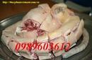 Tp. Hà Nội: Mua đuôi bò tươi ngon ở Hà Nội, LH 0989603612 CL1339298