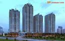 Tp. Hà Nội: Tặng 1 cây vàng cc HP Landmark Tower CL1341968